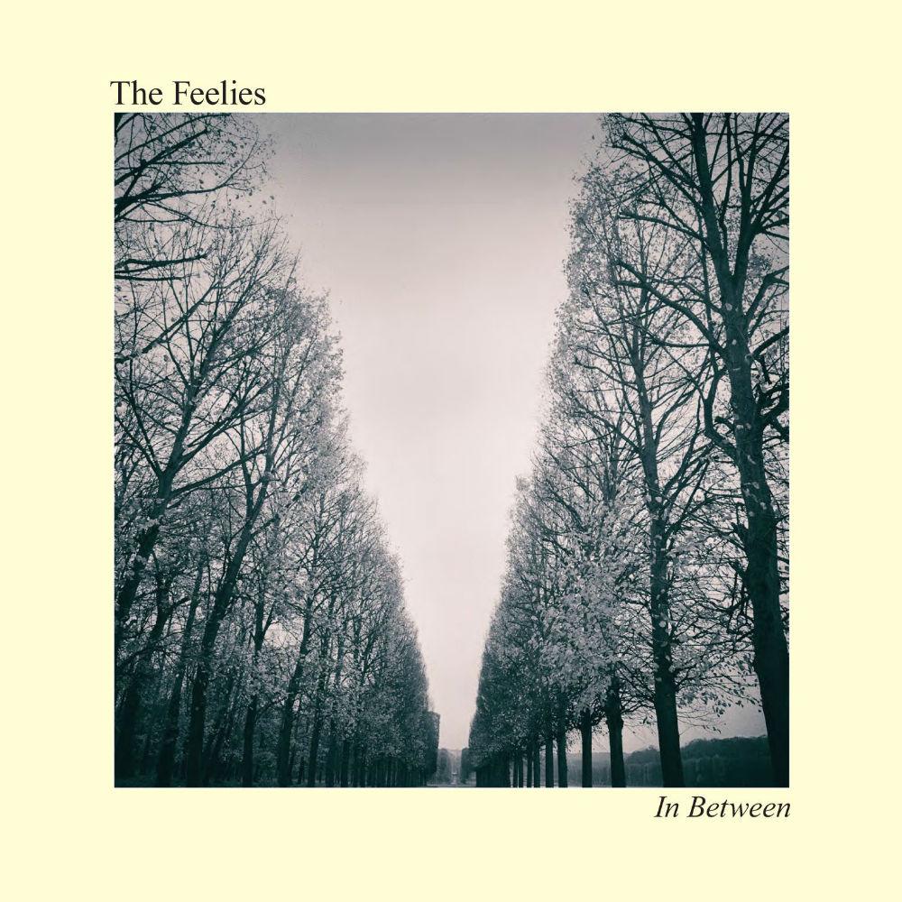 The Feelies NA