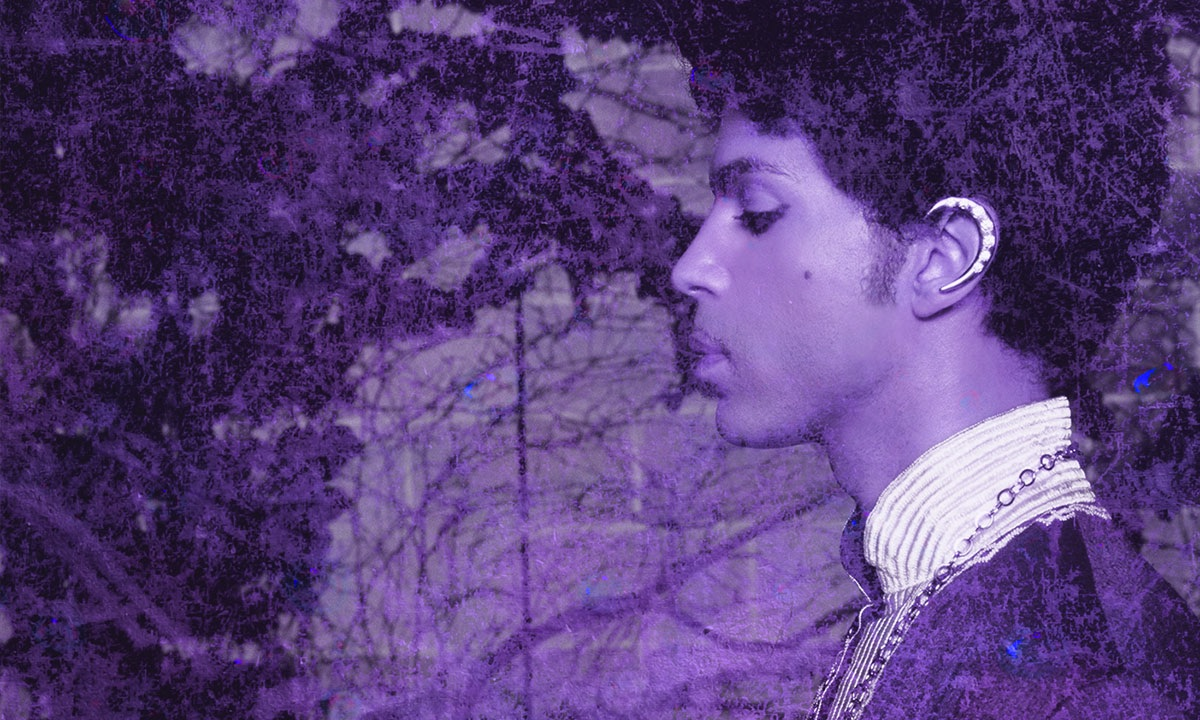 DEVO's Gerald Casale Shares His Prince Picks